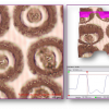 Posuvné laserové texturování povrchu
